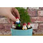Gnomes pour plantes
