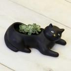 Petit pot chat noir